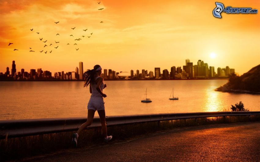 carrera, silueta de la ciudad, mar, bandada de pájaros, cielo amarillo