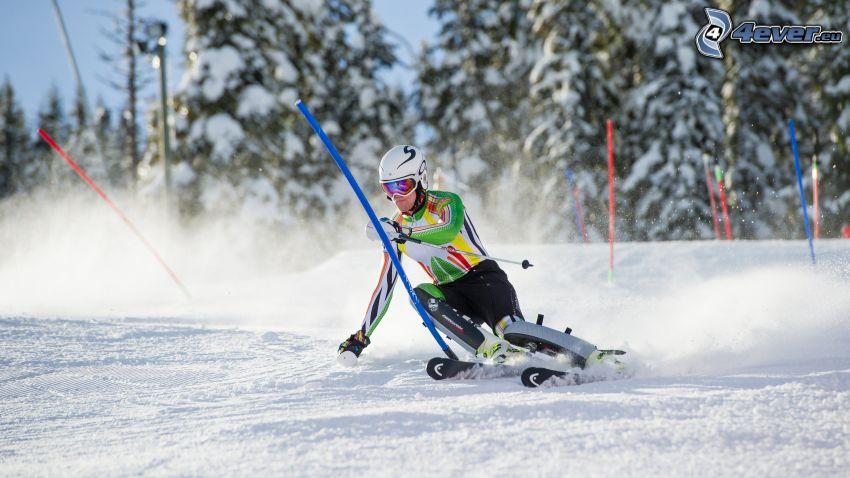 esquí, barra