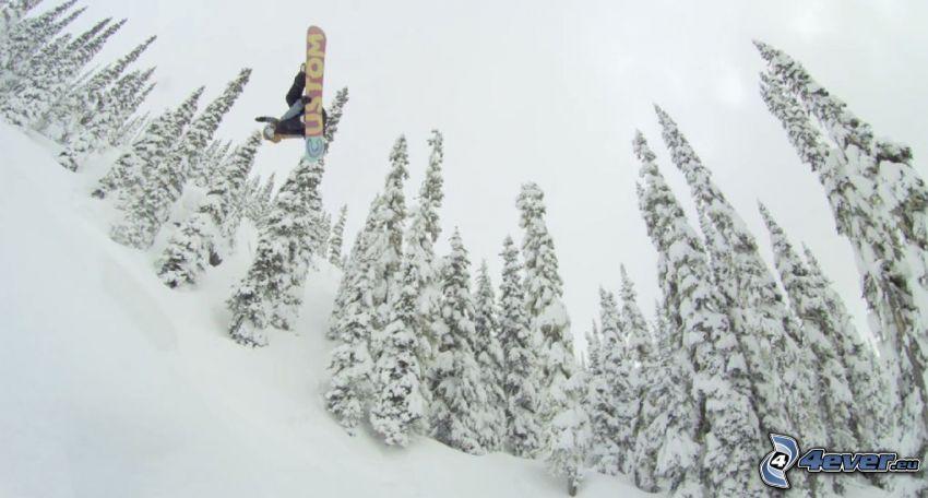 snowboarding, salto, árboles nevados