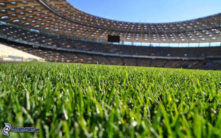 campo de fútbol, estadio