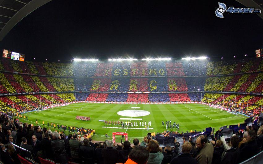 campo de fútbol, futbolistas, estadio