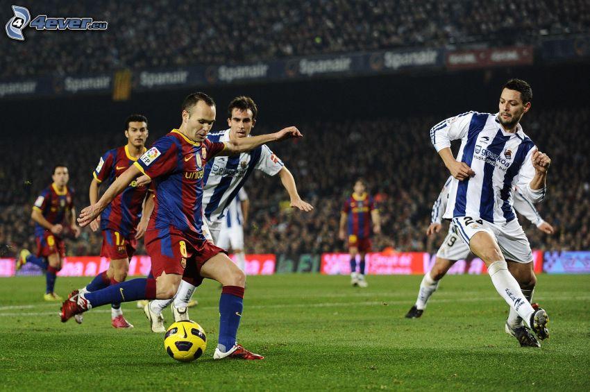 futbolistas, balón de fútbol, campo de fútbol
