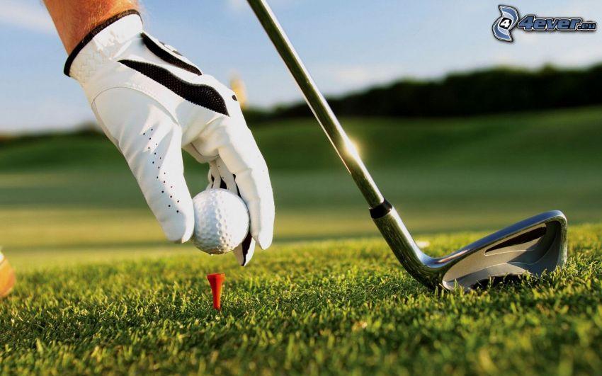 golf, césped