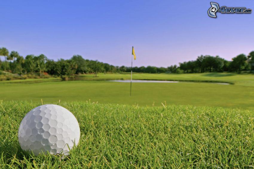 golf, pelota de golf, campo de golf, césped