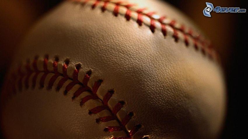 pelota de béisbol