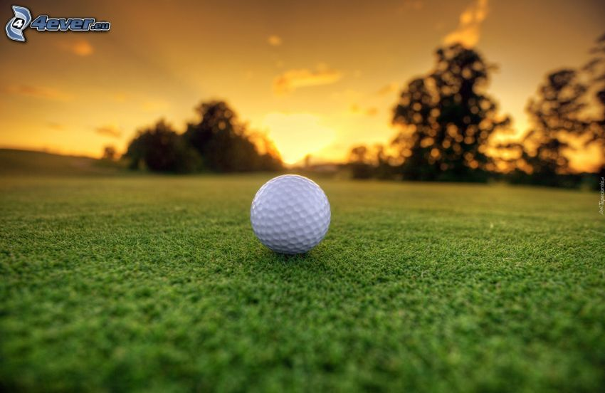 pelota de golf, césped, después de la puesta del sol, siluetas de los árboles
