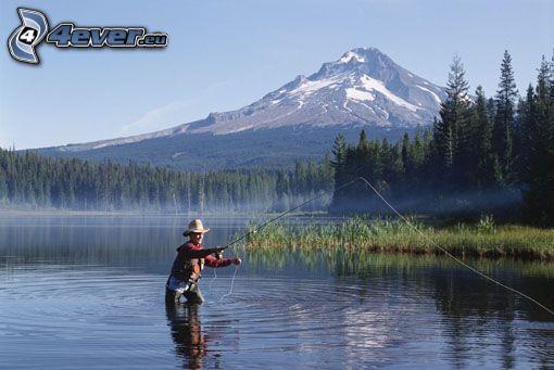 pescador, naturaleza, paisaje