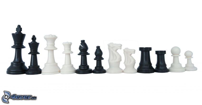piezas de ajedrez, blanco y negro