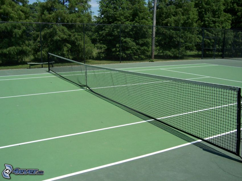 pistas de tenis, árboles