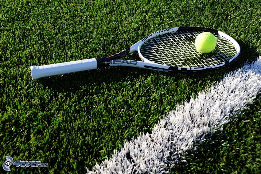 raqueta de tenis, pelota de tenis, línea blanca