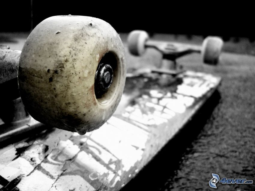 skateboard, ruedas