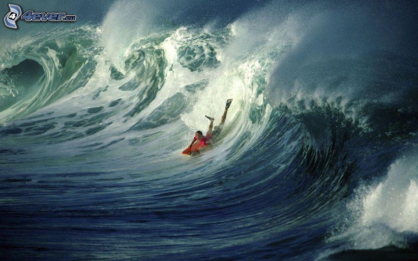 surf, ola