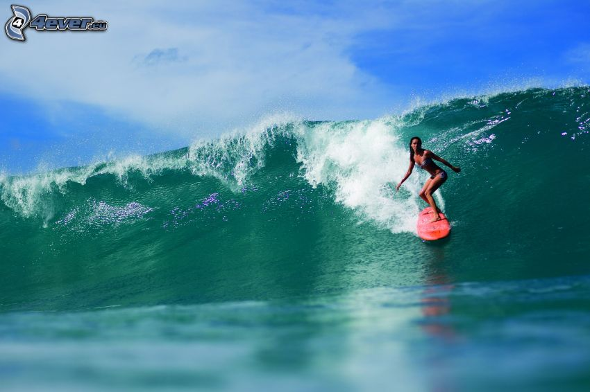 surfista, ola, mar