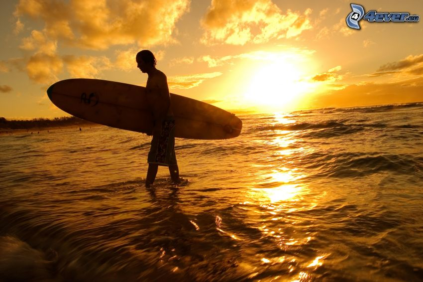 surfista, silueta, puesta de sol sobre el mar