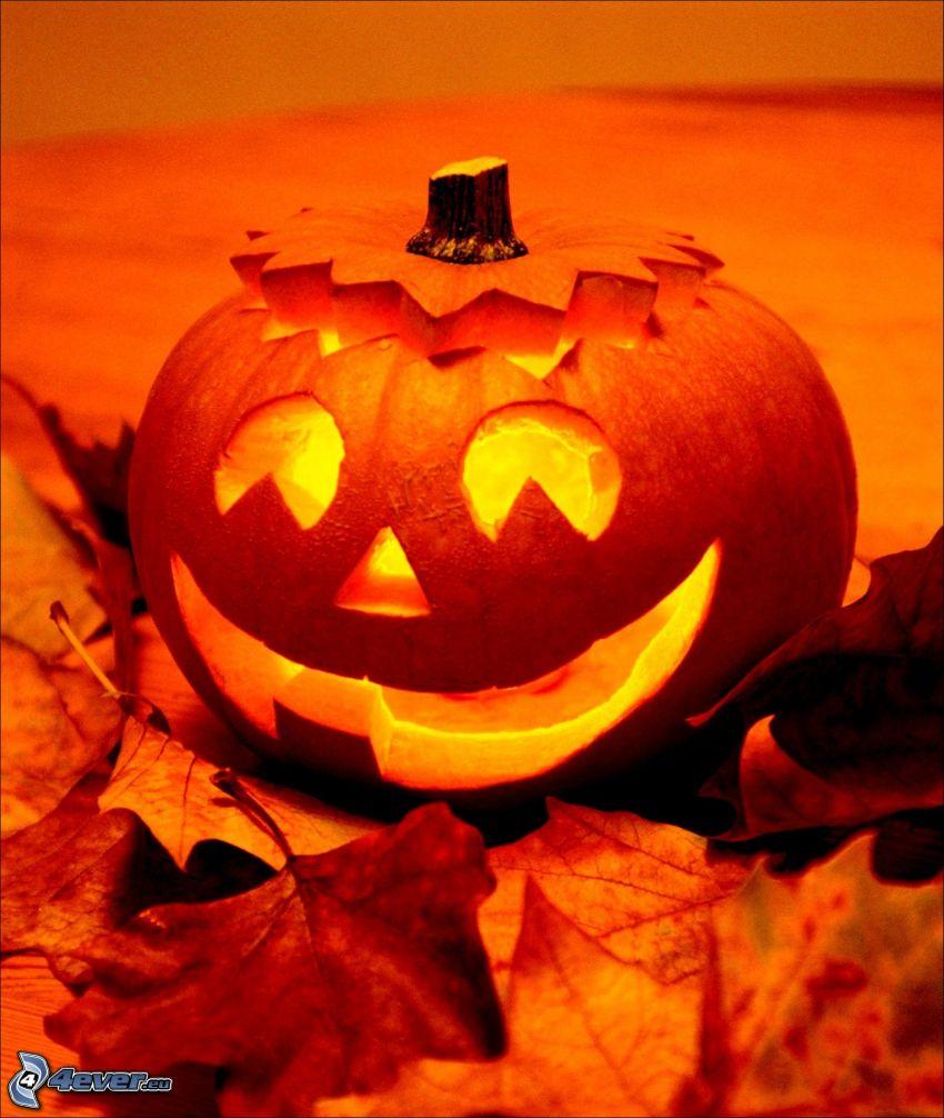 Calabaza de Halloween, jack-o'-lantern, hojas de otoño