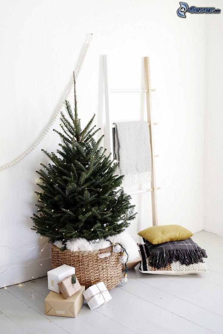árbol de Navidad, regalos, almohadas