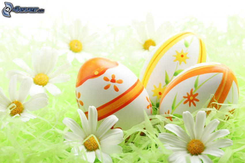 huevos de pascua, margaritas