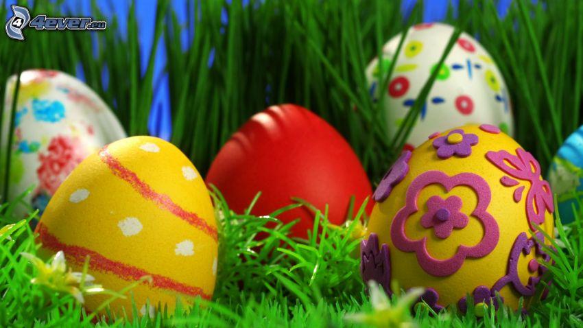 huevos pintados, huevo de Pascua, hierba