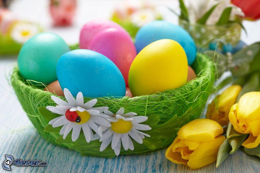huevos pintados, margaritas, tulipanes amarillos