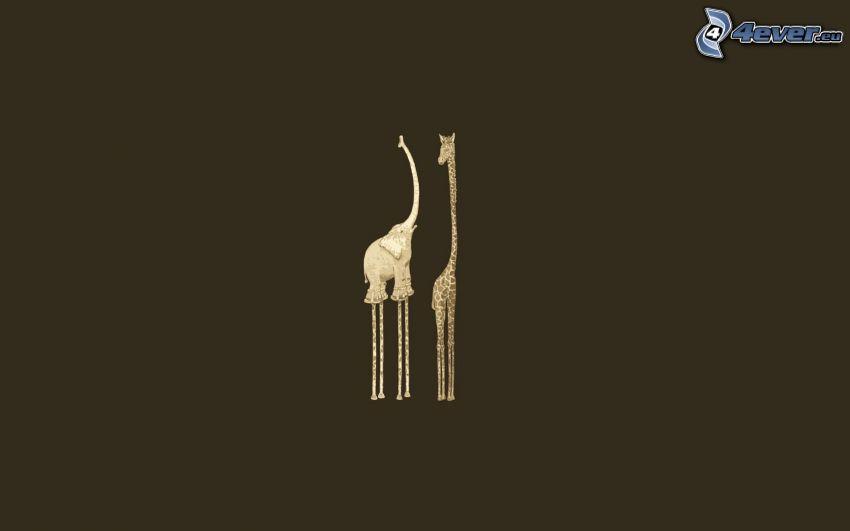 comparación, elefante, jirafa