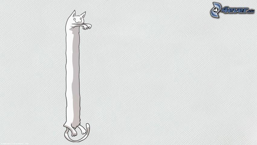 gato alargado