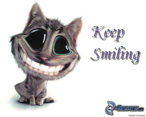 gato de la historieta, sonrisa