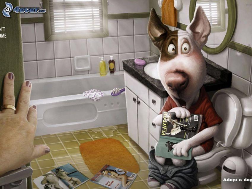 perro pintado a mano, retrete, Playboy, cuarto de baño, mano, sorpresa desagradable