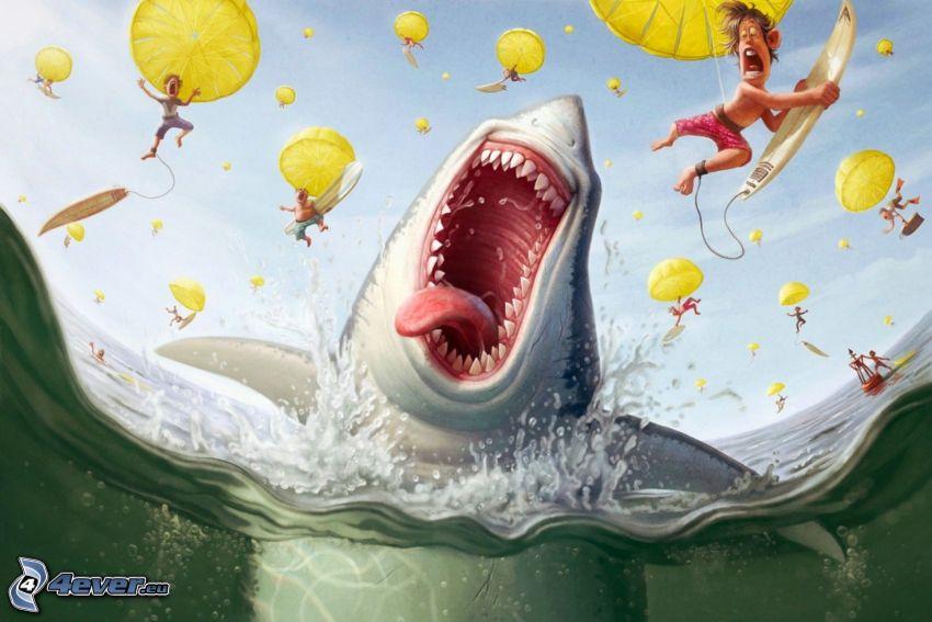 tiburón, surfista