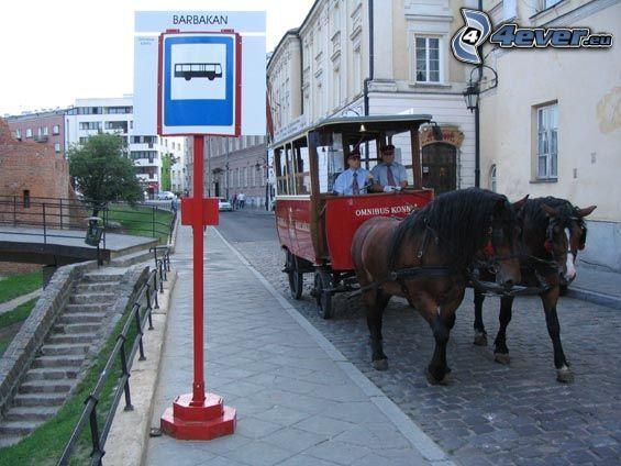 coche de caballos, caballos