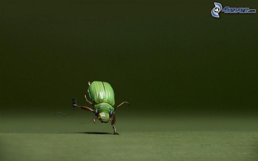 escarabajo, auriculares, mp3 player, baile