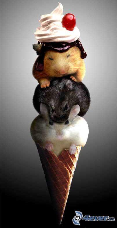 helado, ratones, cono