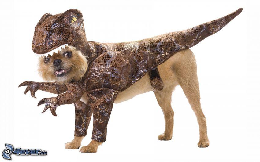 perro, traje, dinosaurio