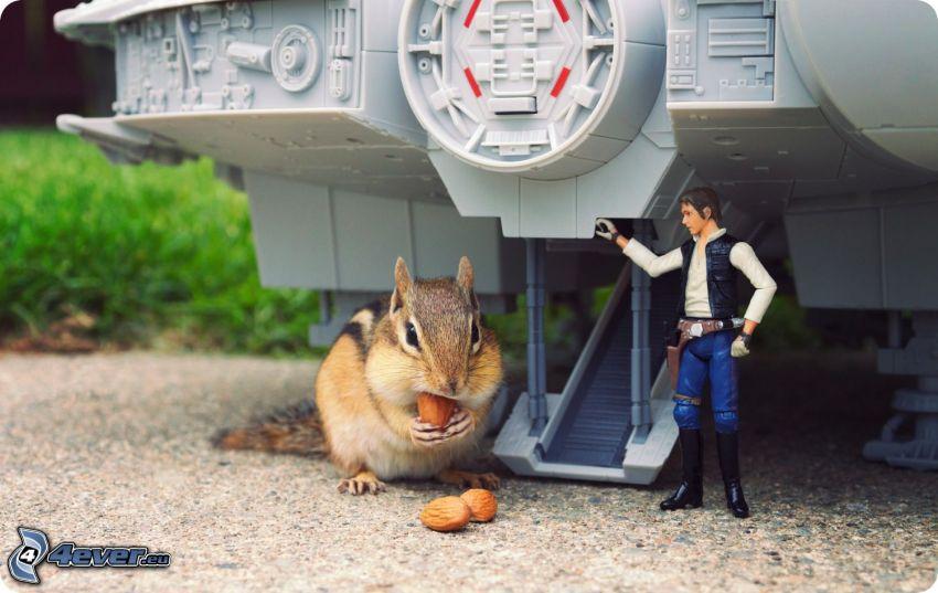 ardilla, Star Wars, parodia