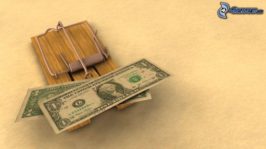 dólares, trampa