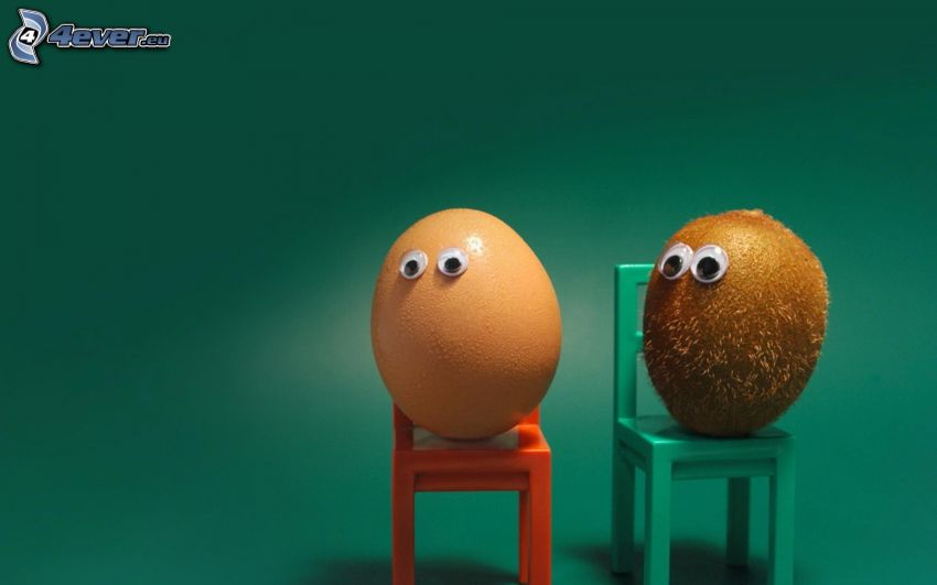huevo, kiwi, ojos, silla