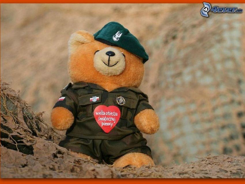 oso de peluche, uniforme