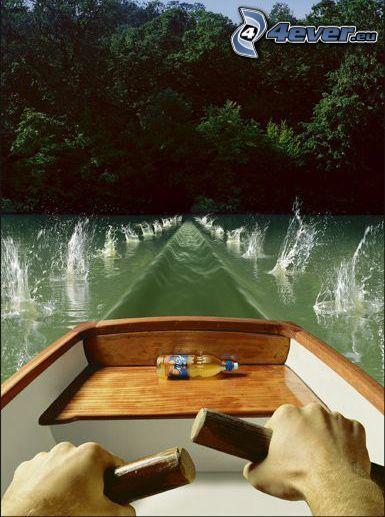 barco, remo, agua
