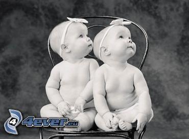 bebés, gemelos