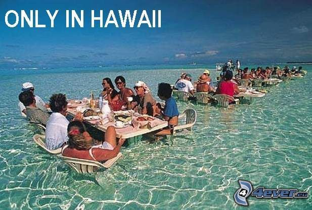 Hawai, mar, sentado