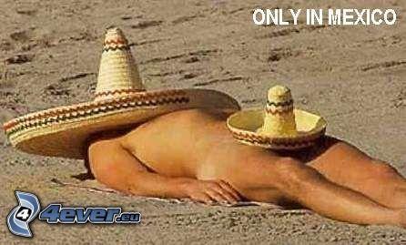 Mexicano, tomar sol, sombrero, playa
