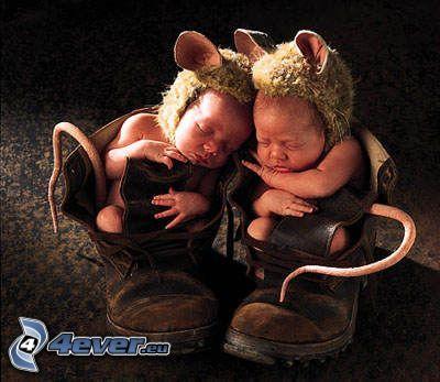niños, ratones, traje, zapatos