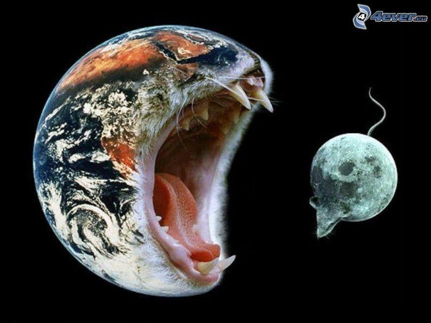 Tierra y la Luna, gato y el ratón