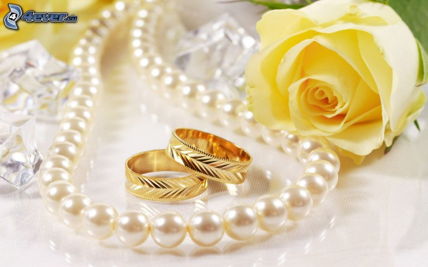 anillos, collar de perlas, rosa amarilla