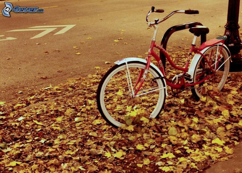 bicicleta, hojas amarillas