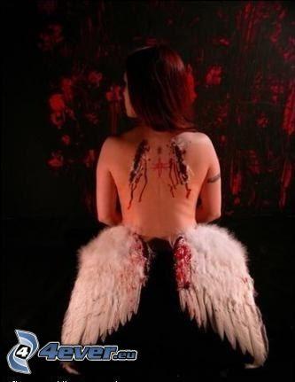 ángel caído, sangre, herida, alas blancas