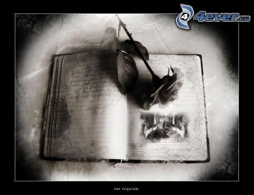 gótica, libro, rosa
