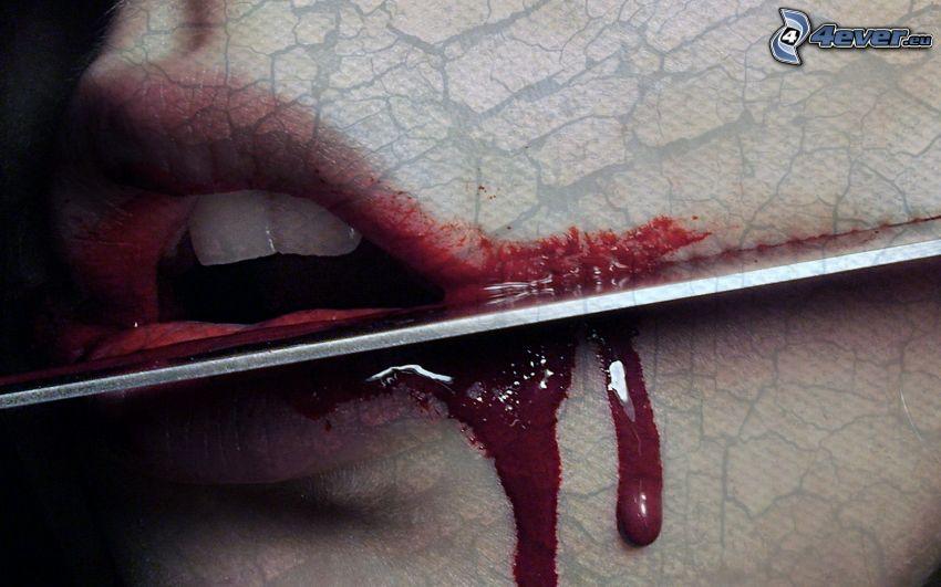herida, boca, sangre