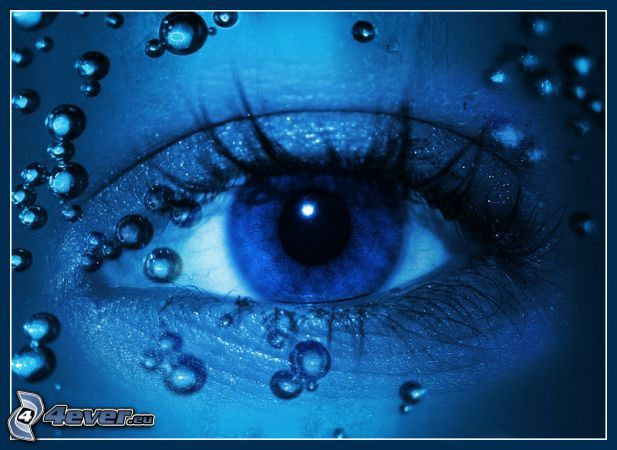 ojo, azul, rocío, gota