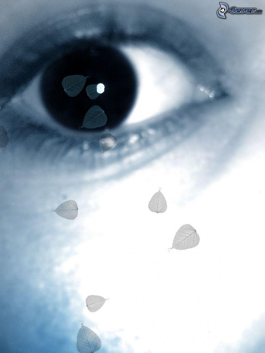 ojo, llanto, hoja, azul