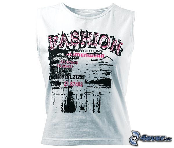 camiseta, ropa
